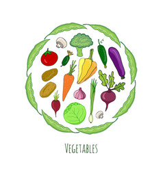 vegetables hand drawn set isolated doodle vector image vector image
