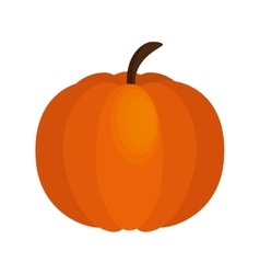 pumpkin thanksgiving food icon vector image