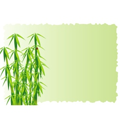 Bamboo decorative element vector image vector image