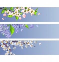set of blossoming branches vector image vector image