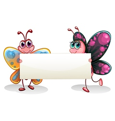 Two colorful butterflies holding an empty banner vector image vector image