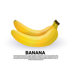 banana on white background healthy lifestyle or vector image