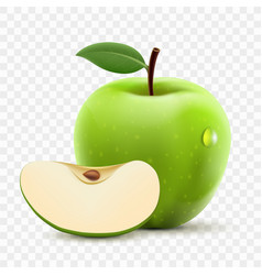 Green apple and slice vector