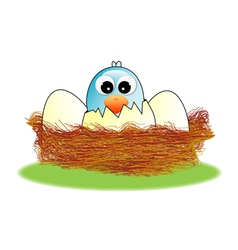 Hatched egg vector