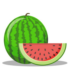 Watermelon and red slice with black seeds vector
