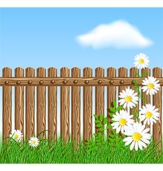 Wooden fence on green grass with daisy vector image