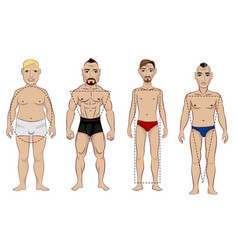 types of male figure vector image vector image
