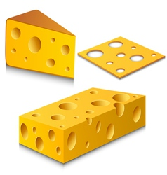 Cheese set vector image vector image