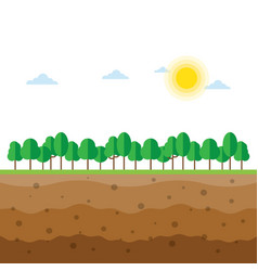 soil profiles with trees vector image vector image