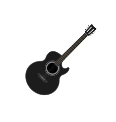 Acoustic guitar isolated vector