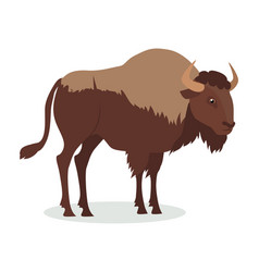 American bison cartoon icon in flat design vector