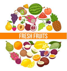 Fresh organic fruits and healthy natural berry vector