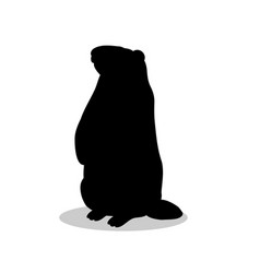 Groundhog rodent black silhouette animal vector