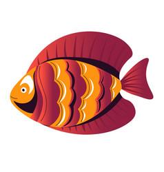 Jewel fish swimming aquarium creature sea vector