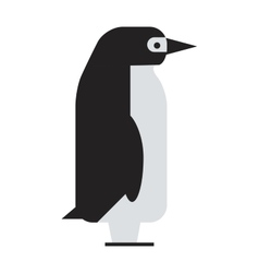 Penguin cute animal bird character vector image