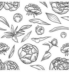peony seamless pattern flowers vector image
