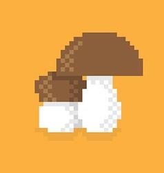 Pixel Mushroom vector image