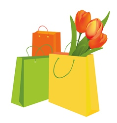 tulips in the shopping bag vector image vector image