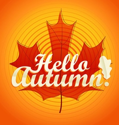Hello autumn logo Color maple leaf vector image vector image