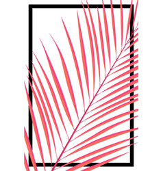 abstract summer card pink tropical leave on white vector image