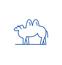 camel line icon concept camel flat symbol vector image