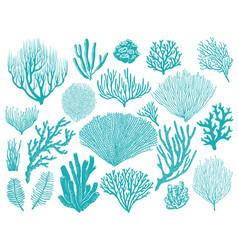 coral reef or seaweeds underwater plant set vector image