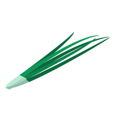 green long onion icon isometric style vector image