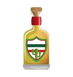 mexican tequila bottle icon vector image
