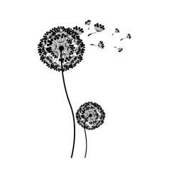 Silhouette couple dandelion and fly petals vector