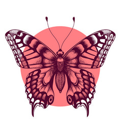 Tattoo butterfly symbol of immortal soul sketch vector