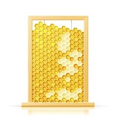 bee honeycomb in frame vector image vector image