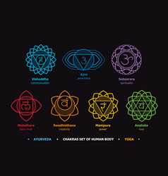 chakras system of human body vector image