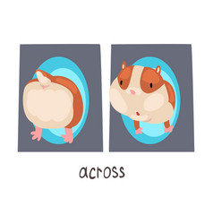 across english language preposition and cute vector image