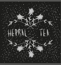 arrangement of herbs and flowers vector image