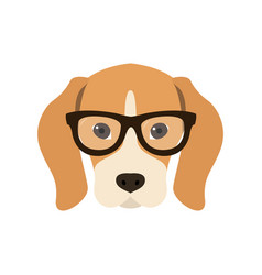 Beagle in glasses cute dog vector