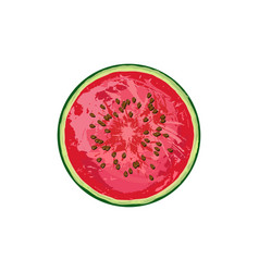circle of juicy watermelon with seeds vector image