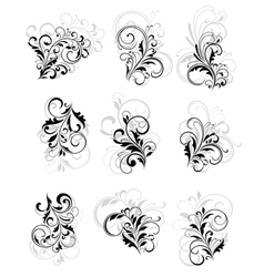 flourish elements vector image