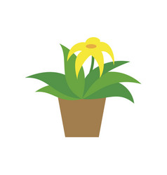 icon in flat design flowering pot vector image