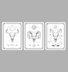 Magic witchcraft taros cards with animal skulls vector