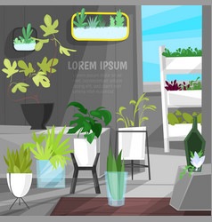 Plants in flowerpots potted houseplants vector