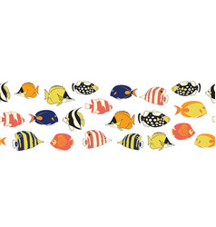 reef fish seamless border vector image
