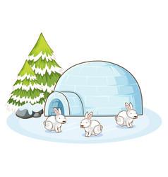 Scene with white bunnies in winter vector