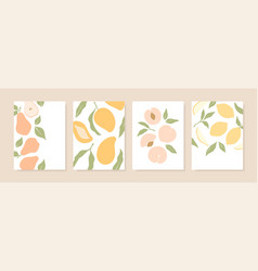 stylish cover designs with summer fruits vector image