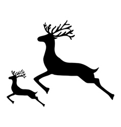 Adult Reindeer and baby deer jumping on a white vector image
