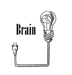 Light bulb with brain connected to plug vector image vector image