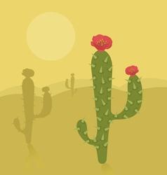 Cactus desert vector
