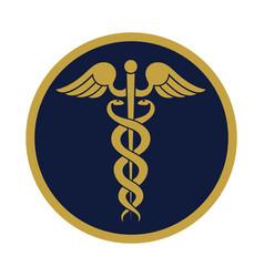 caduceus gold vector image