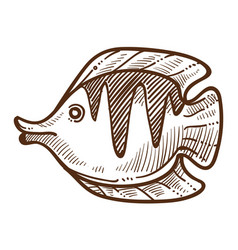 fish flounder isolated sketch underwater animal vector image