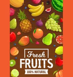 natural ripe cartoon fruits and berries vector image