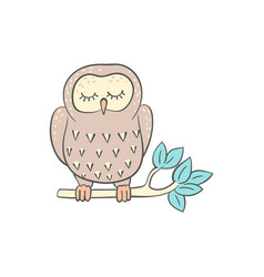 owl sleeping on tree branch cute doodle vector image